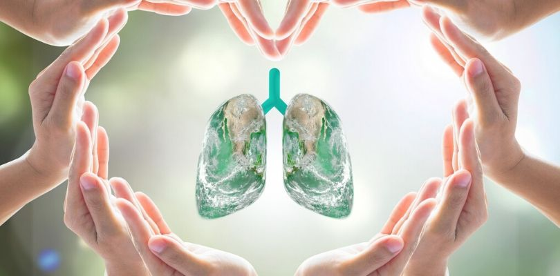 Damaged lungs from COPD.